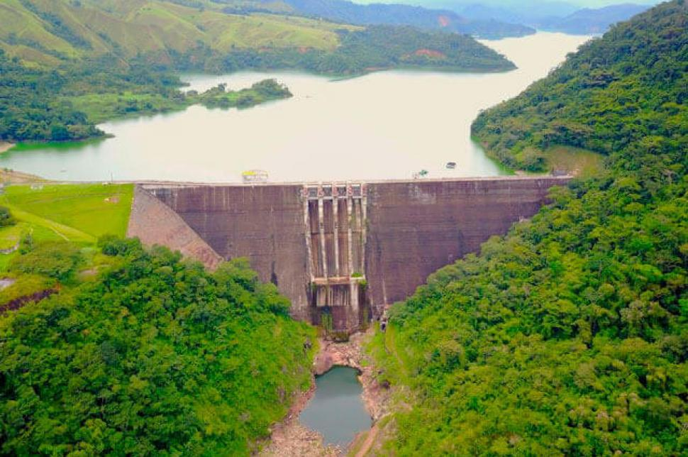 Investigan muerte de 12 mil peces en embalse Porce II de EPM | Colombia | EL FRENTE