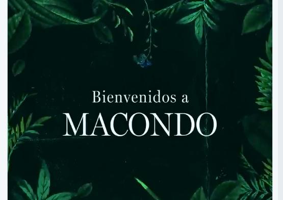 Netflix filmará una serie basada en Cien años de Soledad   EL FRENTE