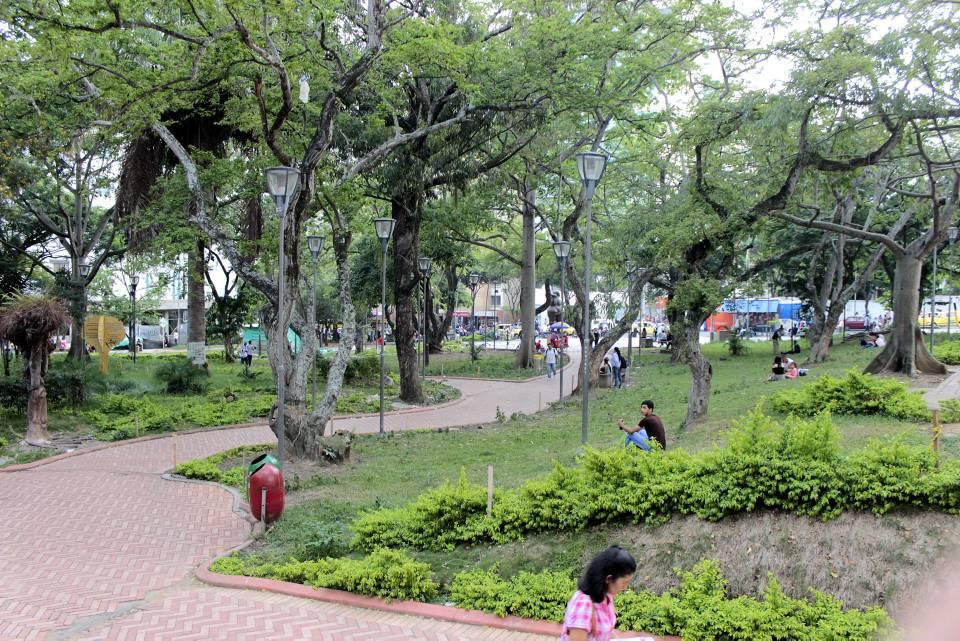 Reto Naturalista. Descubra la biodiversidad de la ciudad  | EL FRENTE