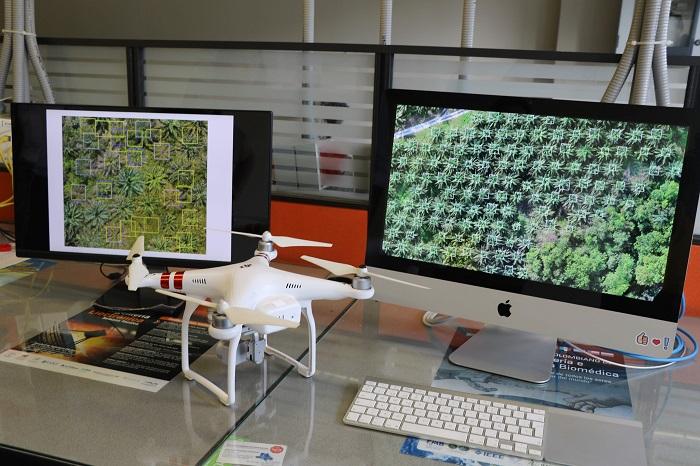 Investigadores UPB al servicio de la agroindustria. Software de fotogrametría para la palma aceitera | EL FRENTE