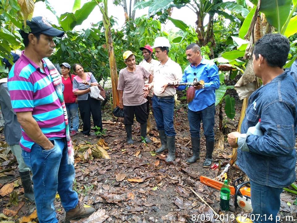 BREVES PORTEÑAS: Capacitación a cacaoteros  | EL FRENTE