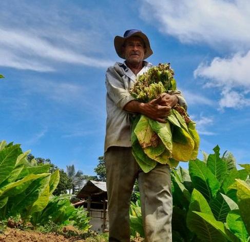 Sanciones a China. Decisión de Trump favorecería a productos colombianos  | Economía | EL FRENTE