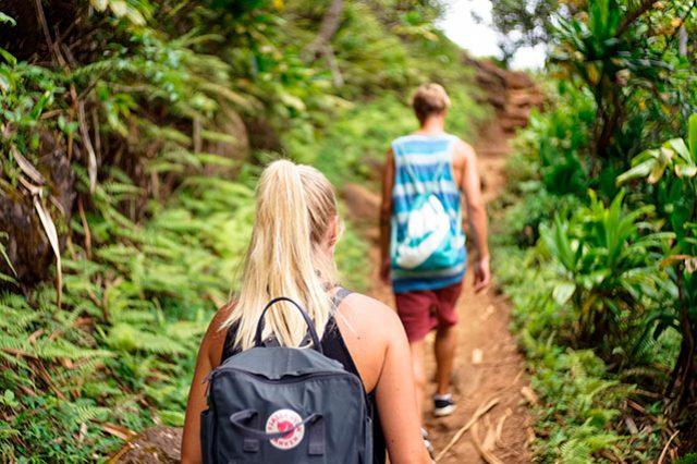 Segunda caminata ecológica dedicada a la protección del medio ambiente | EL FRENTE