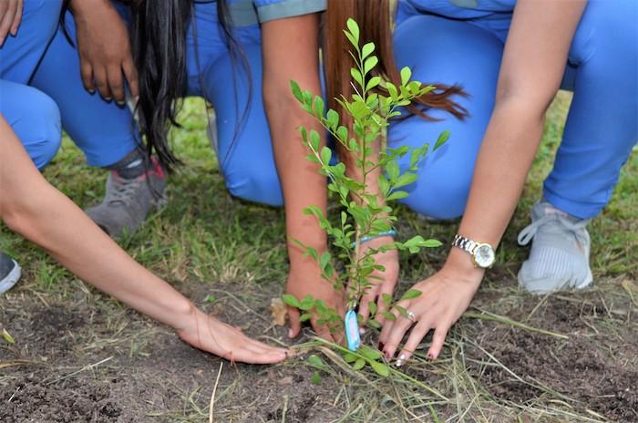 Rol de los estudiantes de enfermería de la UCC. Bioética y la responsabilidad con el medio ambiente    EL FRENTE