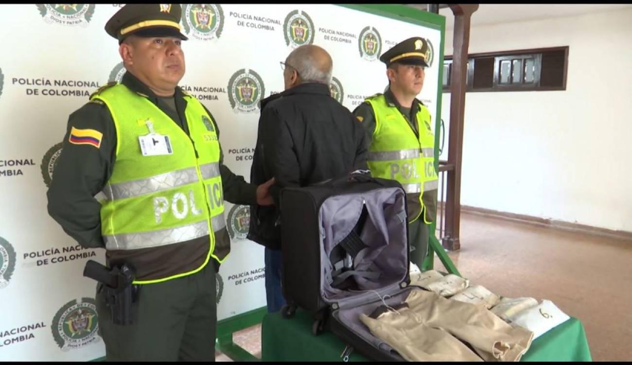 Capturan mula en el Aeropuerto Palonegro | EL FRENTE