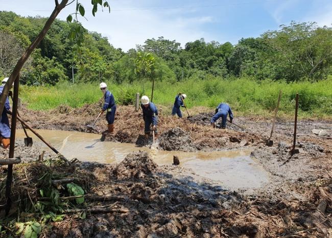 Delincuentes rompieron con machete tubería de Ecopetrol causando grave emergencia ambiental   EL FRENTE
