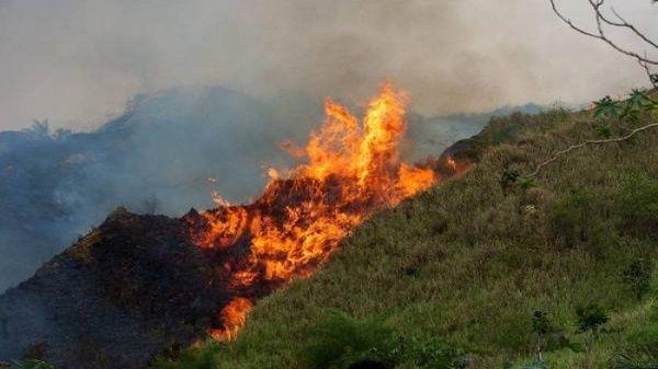 Colombia también sufre su propia crisis por incendios forestales   Colombia   EL FRENTE