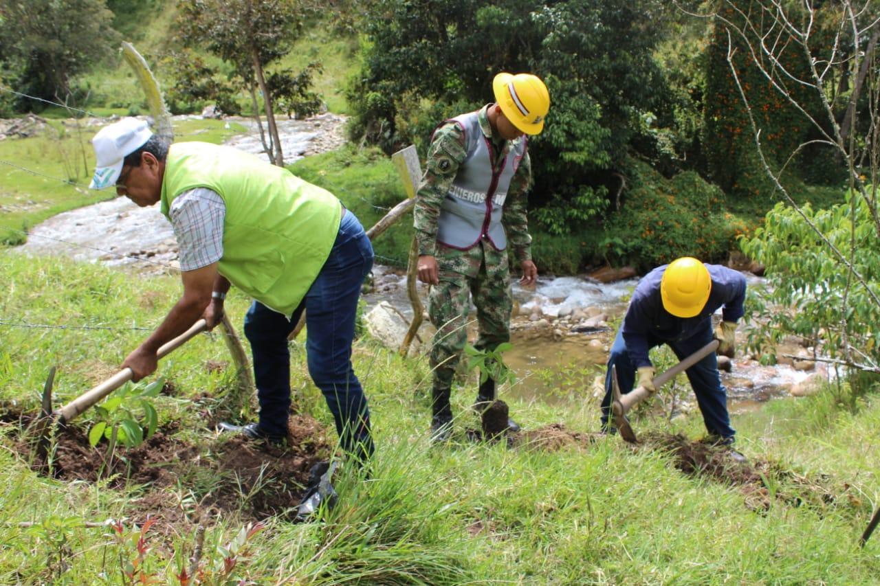 La Burbuja Ambiental descontaminó y reforestó zona especial de Piedecuesta, Santander   Metro   EL FRENTE