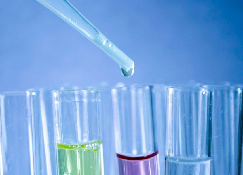 Mes del cáncer de mama: la batalla desde la ciencia   EL FRENTE