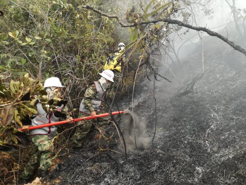 Alertas por sequía en Santander. Restricción al uso de la pólvora para evitar incendios forestales  | Santander | EL FRENTE