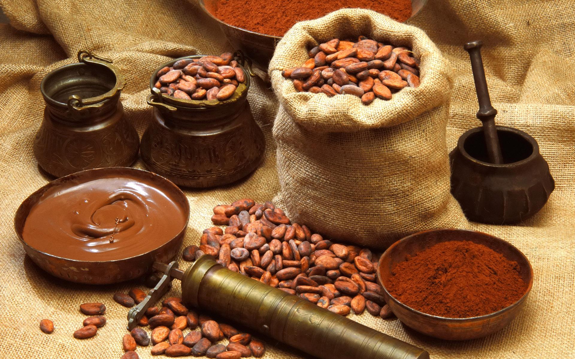 Buena producción del grano el año anterior. Colombia distribuyó 59.665 toneladas de cacao en 2019 | Nacional | Economía | EL FRENTE