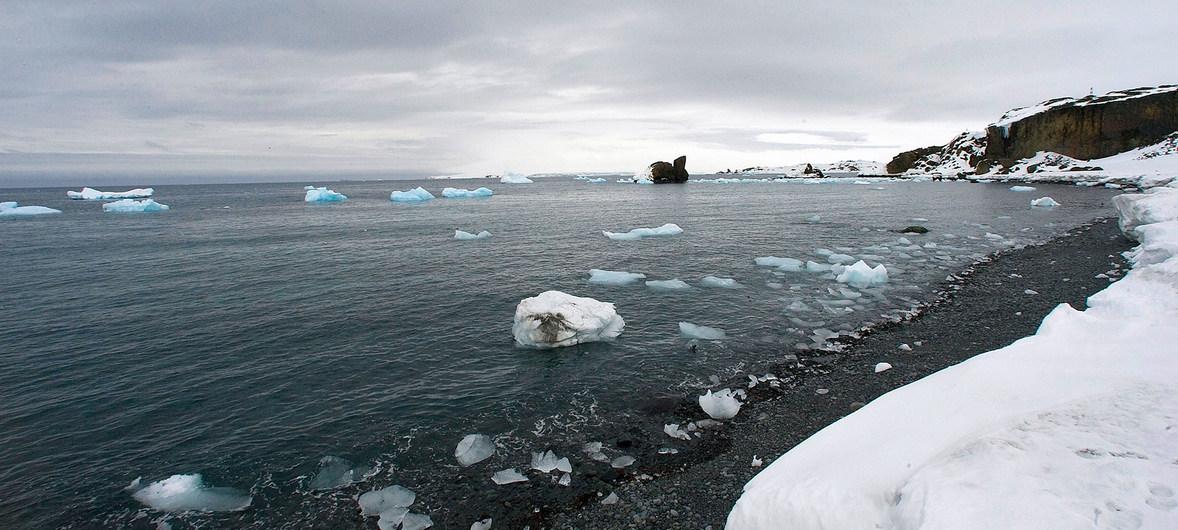 En la Antártida está haciendo calor    EL FRENTE