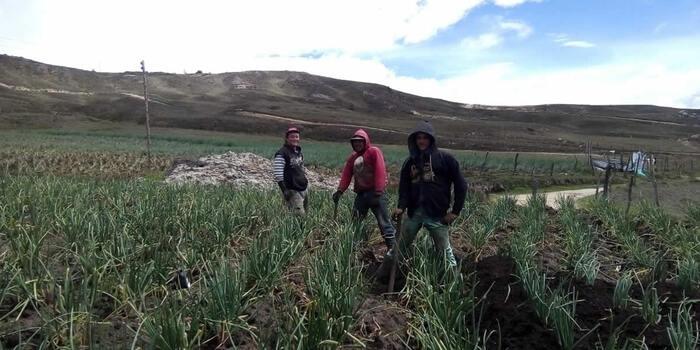 Cebolleros serán los primeros beneficiados de la vía Bucaramanga – Pamplona  | EL FRENTE