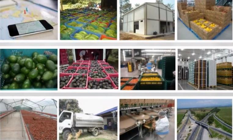 VIII Compra Rural Santander. Rueda de negocios virtual para reactivar el sector agroindustrial | EL FRENTE