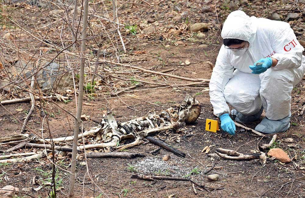 Habitante de calle halló restos óseos en el Norte de Bucaramanga | EL FRENTE