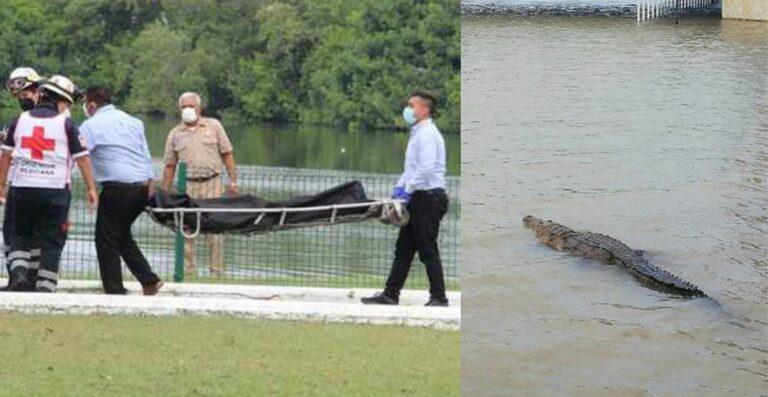 Intentó nadar donde está prohibido y lo devoró un cocodrilo | EL FRENTE