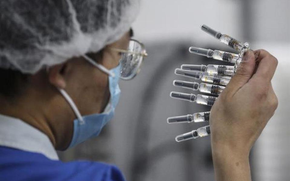 Recibieron vacuna candidata y no sufrieron efectos adversos | Mundo | EL FRENTE