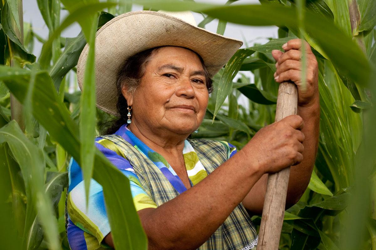 Asamblea rindió tributo a la mujer rural   Local   Política   EL FRENTE