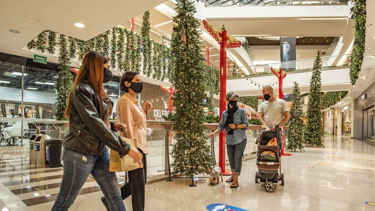 Piden extremar el cuidado sanitario durante la temporada navideña | EL FRENTE