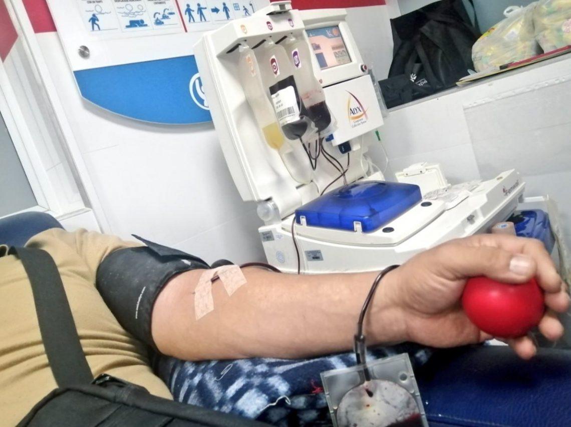 Hospital invita a los bumangueses para que se acerquen a donar sangre   EL FRENTE