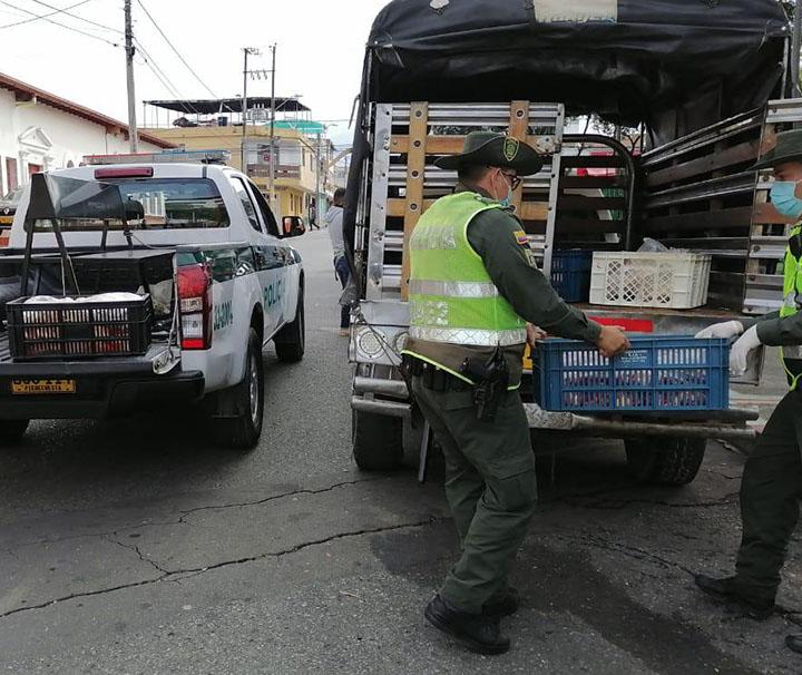 Iban a distribuir carne de caballo y la policía los pilló   EL FRENTE