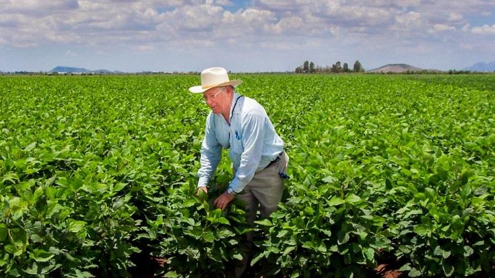 El agro colombiano durante el presente Siglo XXI, o se reconstruye o se muere | Local | Economía | EL FRENTE