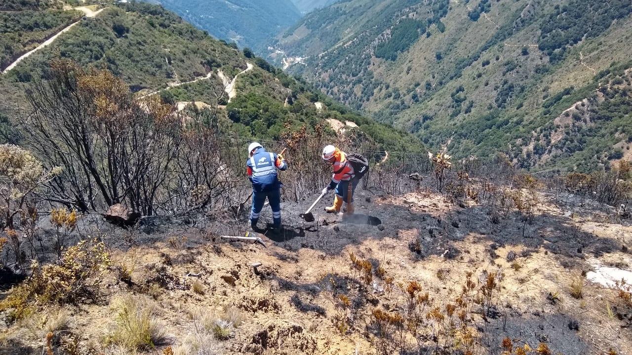 Plan de ayuda mutua, elemento clave en el cuidado del Páramo de Santurbán  | EL FRENTE