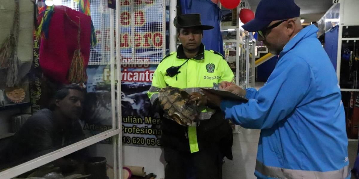 Animales silvestres eran vendidos en una papelería en Bogotá | EL FRENTE