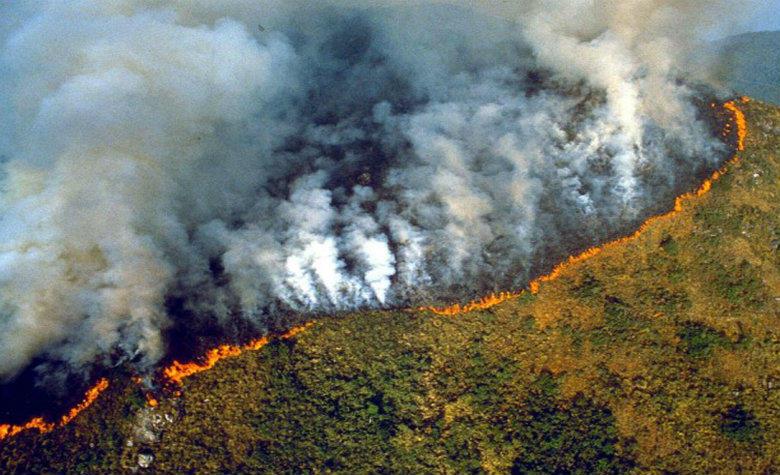 Fuego consume la Amazonía de Brasil | foto | EL FRENTE