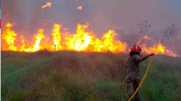 Paraguay declaró la emergencia ambiental por incendios forestales | EL FRENTE