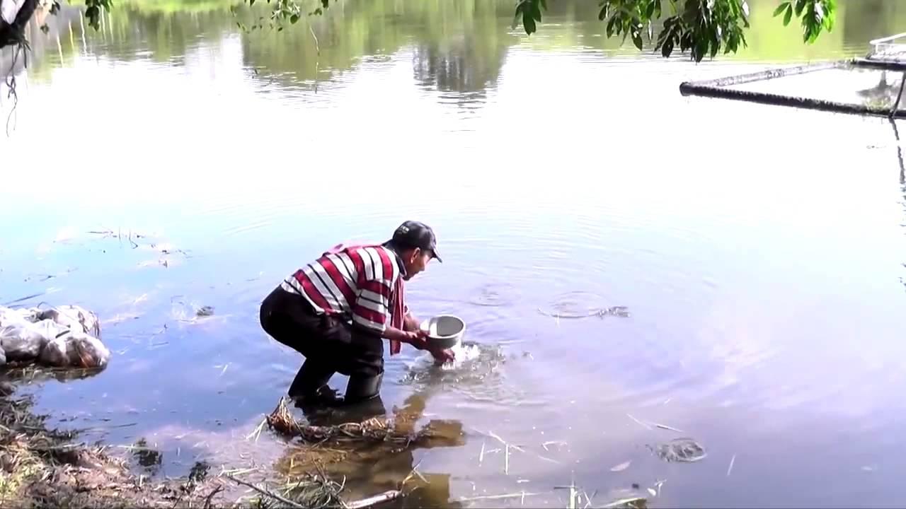 Las fuentes que abastecen al acueducto de Barrancabermeja estan contaminadas  | Santander | EL FRENTE