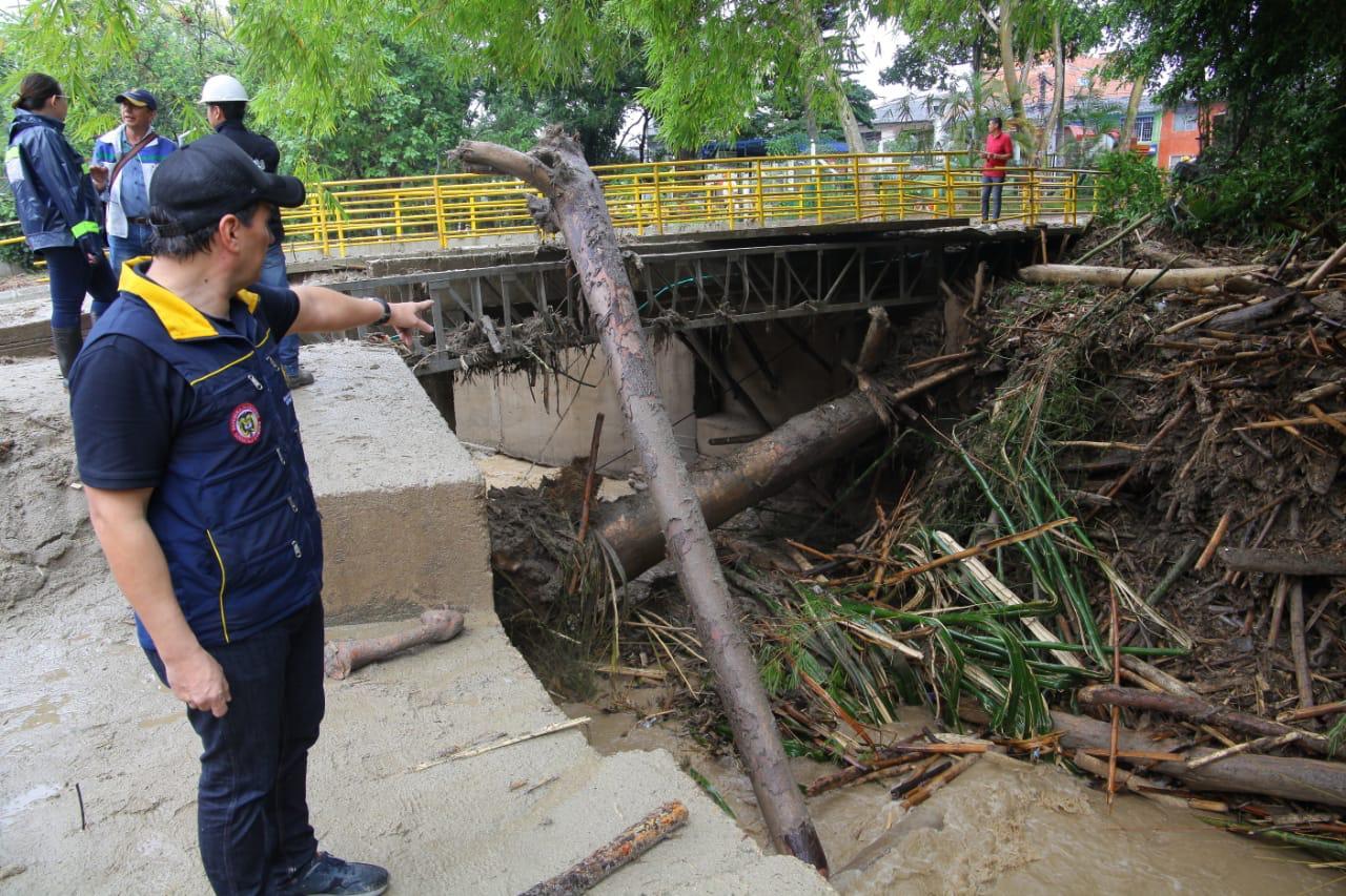 Enorme árbol causó la emergencia en Floridablanca | Metro | EL FRENTE